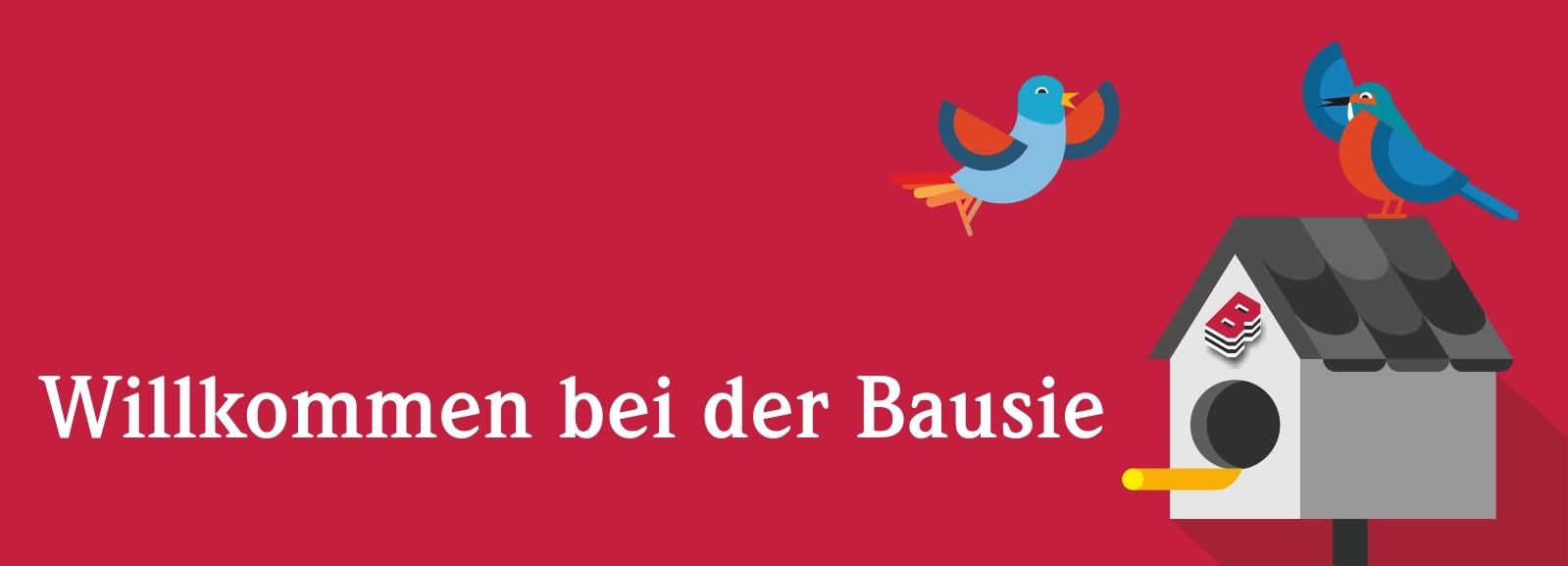 Banner-Bausie-HP-GF-Wechsel
